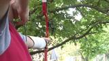 HD - Archery 02 stock footage
