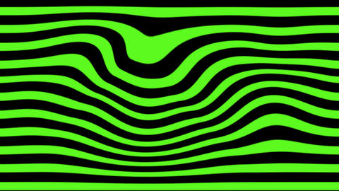 green zebra Animation