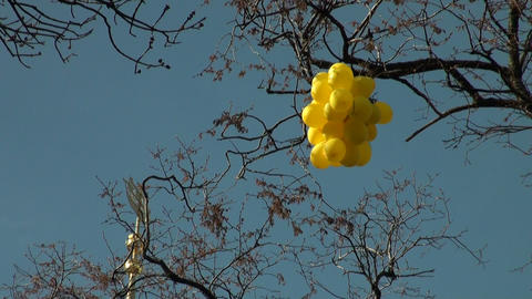 Balloons on a wind Stock Video Footage
