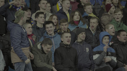 A group of football fans at the match Footage
