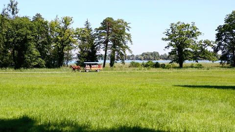 Horse drawn carriage at the isle of Herrenchiemsee, Bavaria Footage