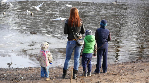 Woman With Children Feeding The Seagulls. Slow Motion stock footage