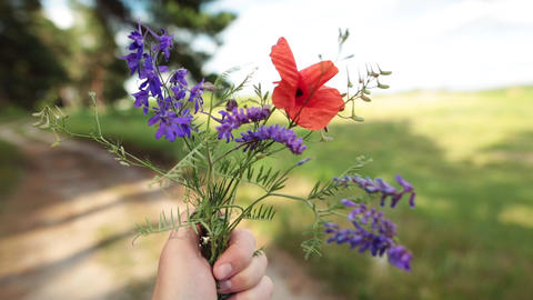 Man holding a bouquet of wildflowers in his hand. Travel concept Footage