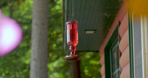 Close up of a red glass hummingbird feeder hanging outside a log cabin blowing ライブ動画