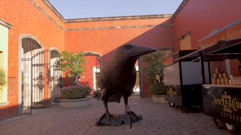 TEQUILA, MEXICO - CIRCA FEB 2017 - Large bronze raven or crow statue in the ビデオ