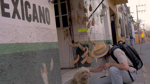 Caucasian tourist man wearing a backpack and a hat petting a stray dog next to a GIF