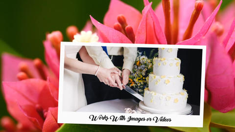 Romantic Wedding Gallery-Innate Wedding After Effects Template