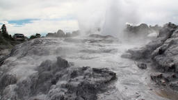 Geysers hot springs on background of forest and sky horizon in New Zealand Footage
