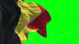 4K Flag of Belgium - Seamless Looping Animation