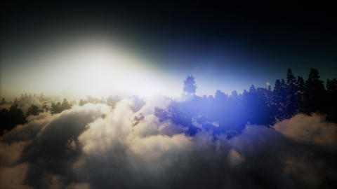 aerial over clouds in pine tree highland forest Footage