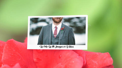 Lovely Slides-Rose Photo Slides After Effects Template