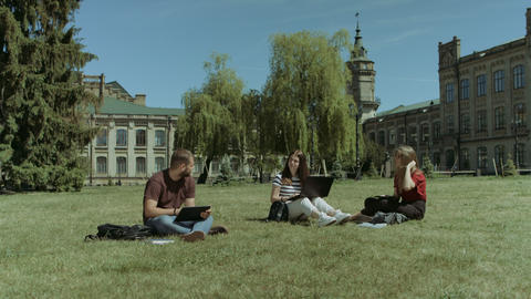 Students sharing with the ideas on the campus lawn Footage