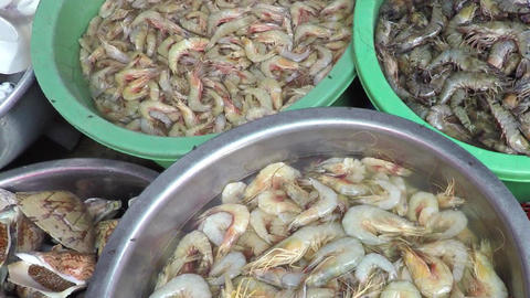 Mixed Fresh Seafood for Sale at a Local Market Footage