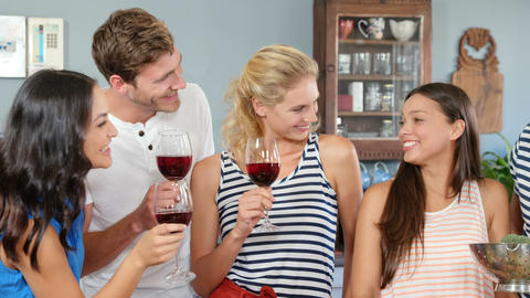 Friends talking and drinking wine Footage