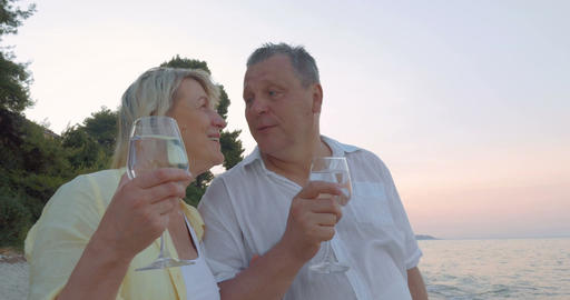Mature Couple with Glasses on the Sea Shore Filmmaterial