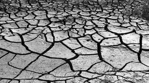 global warming and drought, the deep splitting of soil from thirst Live Action