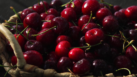 Cherries. Cherry. Cherries in color bowl and kitchen napkin. Red cherry. Fresh Footage