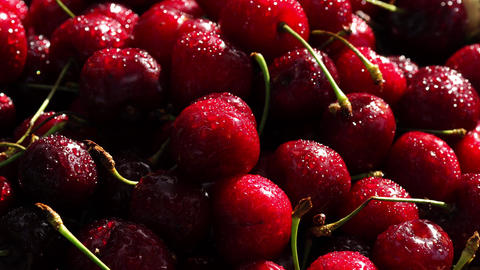 Fresh cherry with water drops on dark background. Fresh cherries background Footage