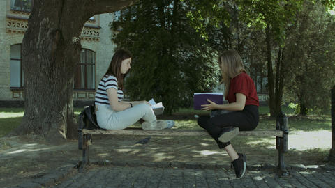 Two college girls talking on the bench after study Footage