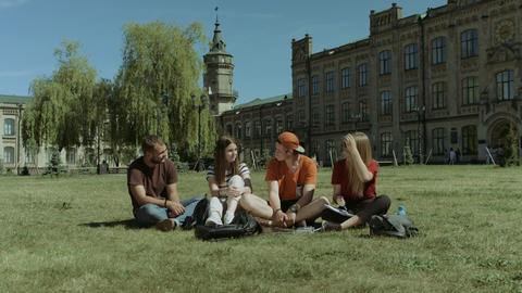 Cheerful group of students chatting on campus lawn Footage