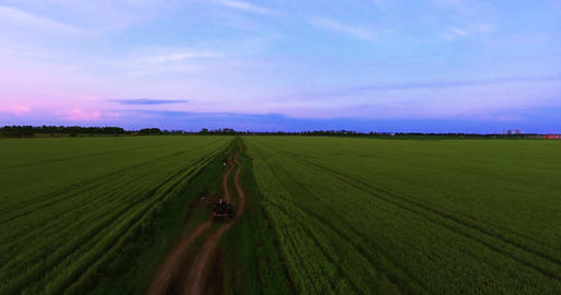 Young couple. ATV moving on a country road. Rural field with wheat. Russia Footage