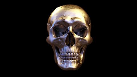 Skull CG動画素材