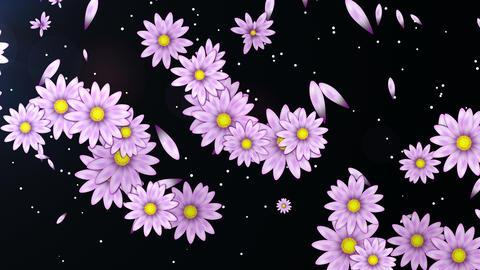 Spring Flowers 4K 03 Vj Loop Animation