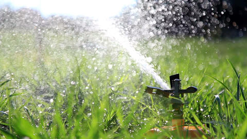 Water Sprinkler Watering Grass In Park stock footage
