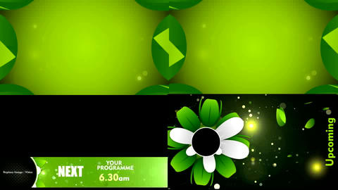 Flower Tv Package folder After Effects Template