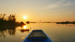 Sunrise in Morning on boat trip at pink lotus lake, Thailand. - Stock video Footage