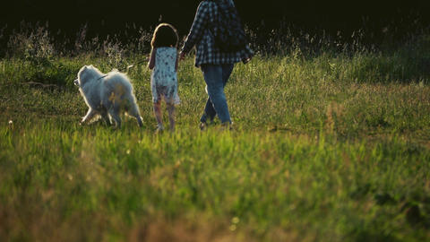 Slow motion shot of unrecognizable family walking with dog on summer meadow GIF
