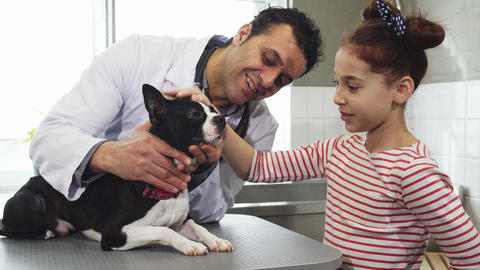 Little girl and her cute dog visiting professional vet at the clinic Live Action