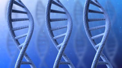 Rotating DNA Animation