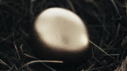 Golden egg inside nest Footage