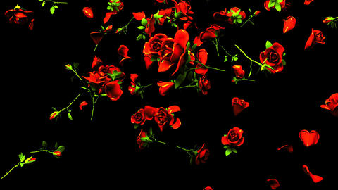 Falling Red Roses On Black Background Animation