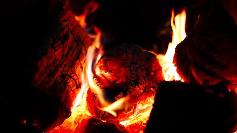 Burning wood in the fireplace. Close-up. Beautiful flame Footage