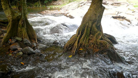 Scenic landscape of the nature streams of waterfalls Live Action