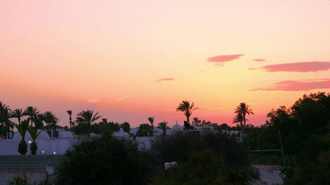 Beautiful view colored sky at evening sunset. Palm trees and arabian city while Footage