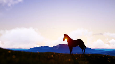 Standing and grazing horse with far away mountains and sunshine behind Animation