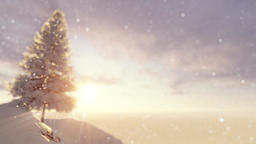 Fir tree on a snowy mountain Animation