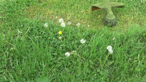 Cut grass with lawn mower trimmer, slow motion Footage