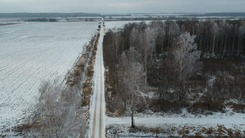 gravel road in winter and frosty tree in forest, aerial view ビデオ