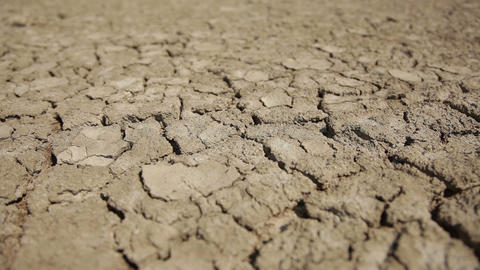 Dried Soil, slider shot Live Action
