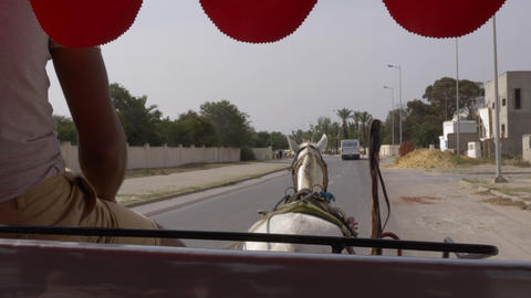 Point of view from horse carriage with coachman driving on city street. Horse Footage
