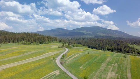 Aerial panoramic view of fresh spring landscape Footage