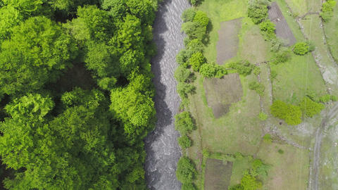 Aerial Shot Forest and River Stock Video Footage
