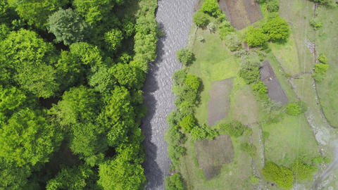 Aerial Shot Forest and River Footage