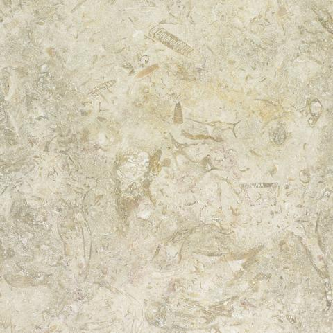 White Gold Tumbled Limestone Texture Photo