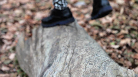 Legs of a man wearing black shoes which runs on a toppled tree trunk 96a Footage