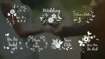 7 Wedding ornaments with flowers After Effects Template